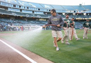 groundskeepers